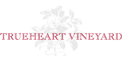 Trueheart Vineyard logo