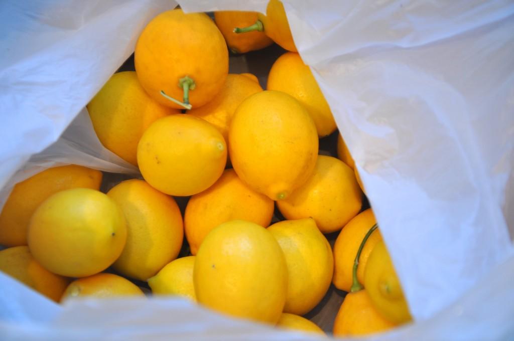 Beg of lemons