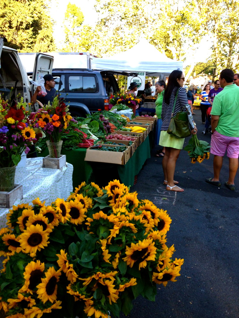 Sonoma, Farmer's Market, Sunflower